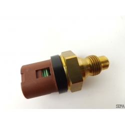 Sonde de température d'eau Clio, Megane, Scenic, R19